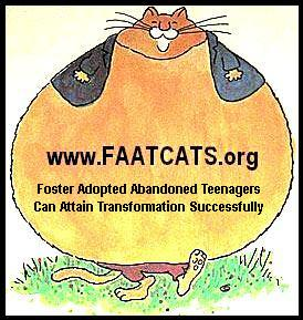 FAAT CATS helps Foster Teenagers find homes and a life